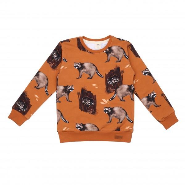 Walkiddy Sweatshirt Curious Raccoons